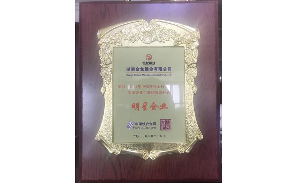 2017年中国铁合金行业二十佳明星企业