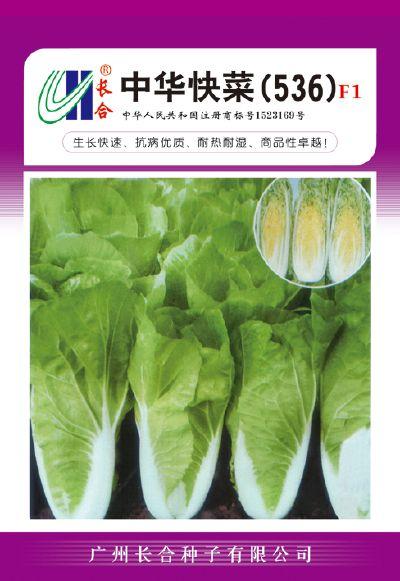 中华快菜(536)F1