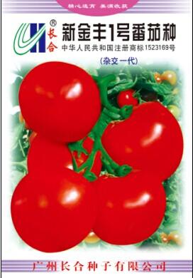 新金丰一号番茄种