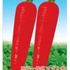 五寸红萝卜