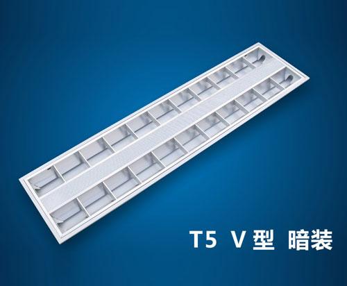 BT5-038 T5-V-2*28