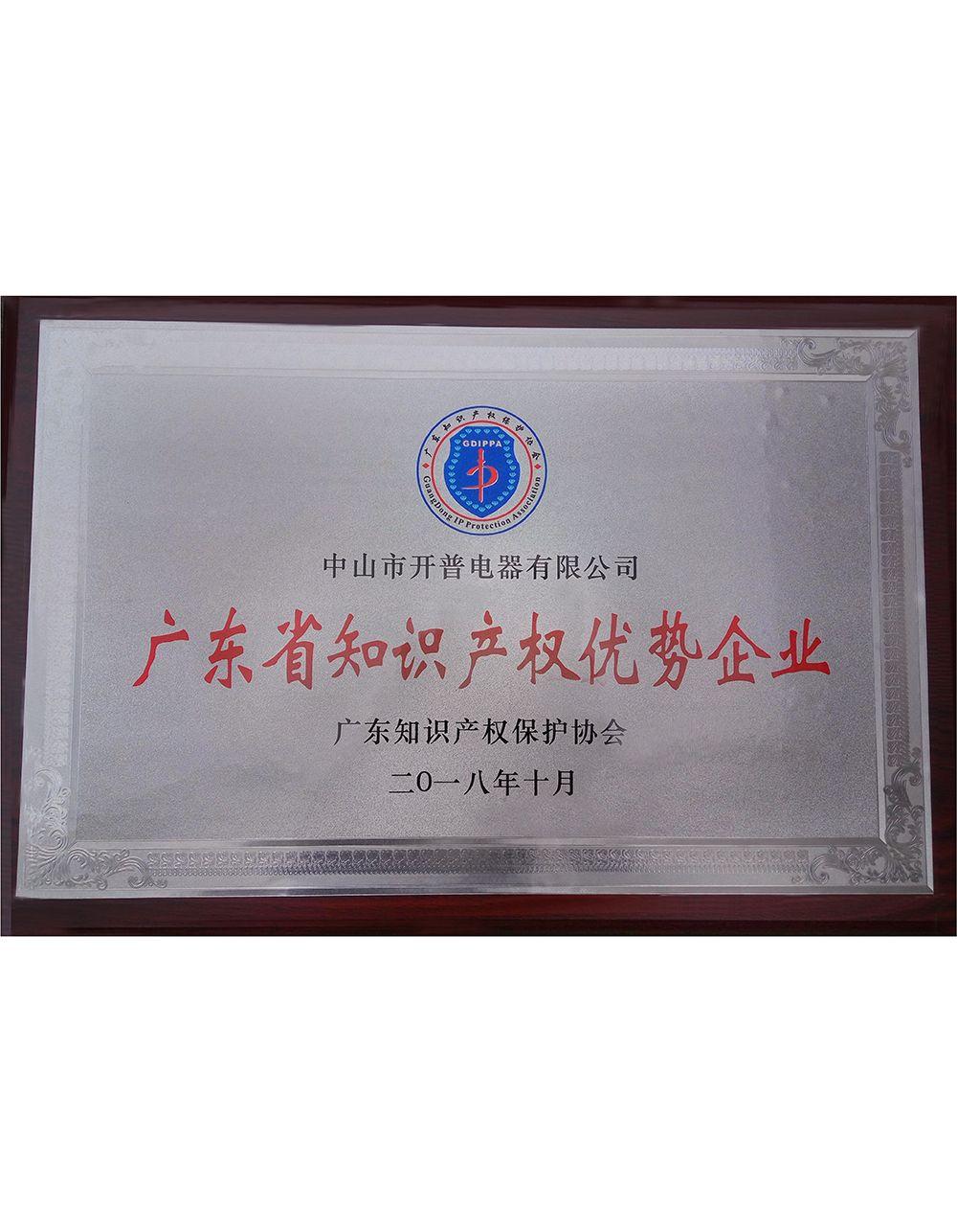 广东省知识产权优势企业-证书