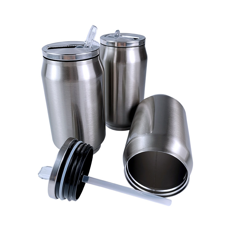Double Wall Stainless Steel Bottle BY-E-DS003