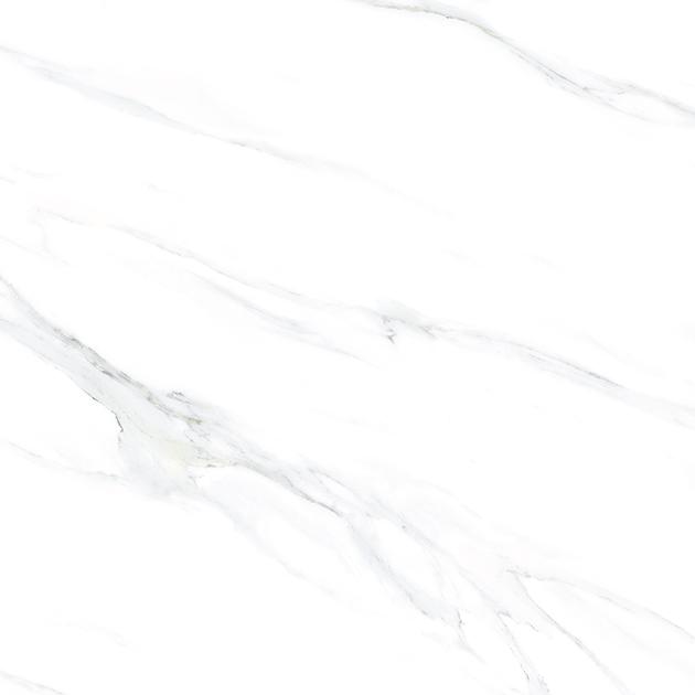 88ZJ019PN