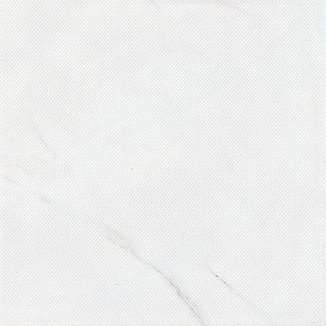 JAP98602