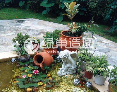 我的花园里有陶罐和月季