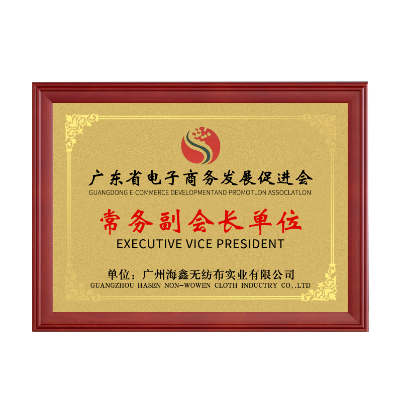 广东电子商务副会长单位