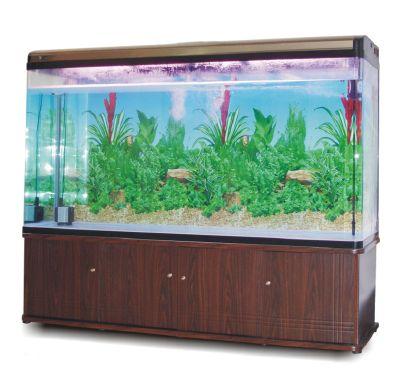 H-系列玻璃鱼缸