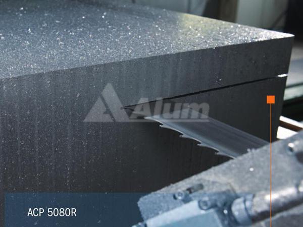 ACP5080RS